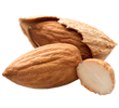 almond-small